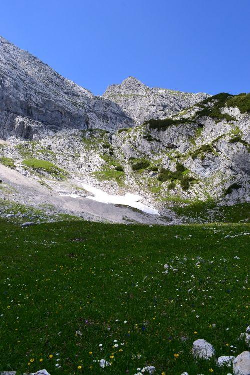 alpine alphabet meadow
