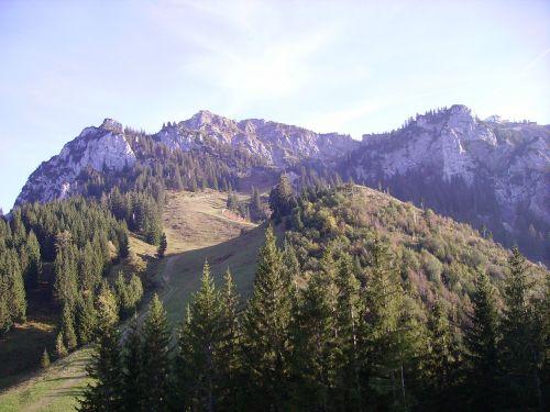 alpine allgäu tegelberg