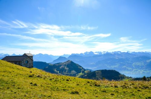 alpine rigi nature