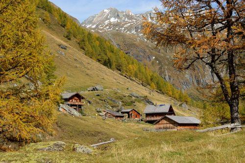 alpine alm alpine hut