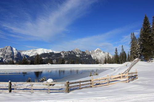 alpine winter fence