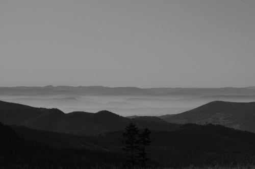 alpine black forest panorama