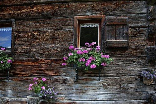 alpine hut  kleinwalsertal  alpine