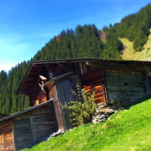alpine hut alm mountain hut