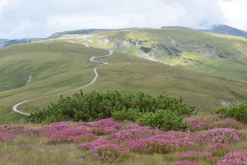 alpine road mountain path mountain top