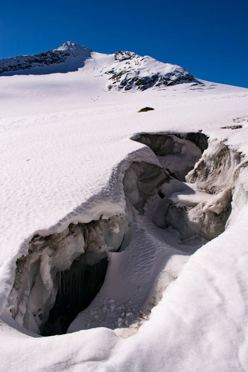 Alpės,ledynas,krekas,austria