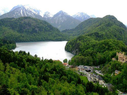 alpsee hohenschwangau forest