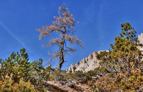 alta badia  south tyrol  dolomites
