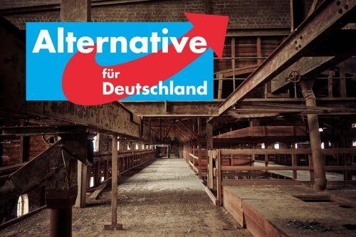 alternative for germany afd völkisch-nationalist