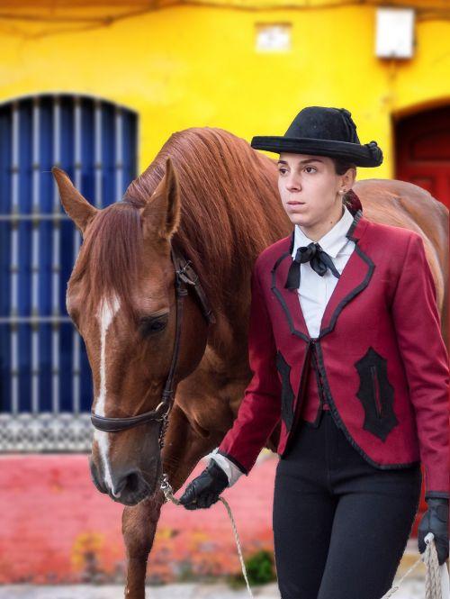 amazon andalusia horse