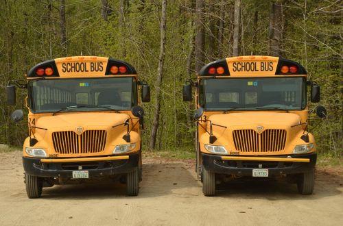 america bus schoolbus