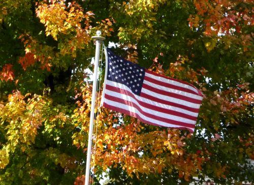 American Flag Foliage Background
