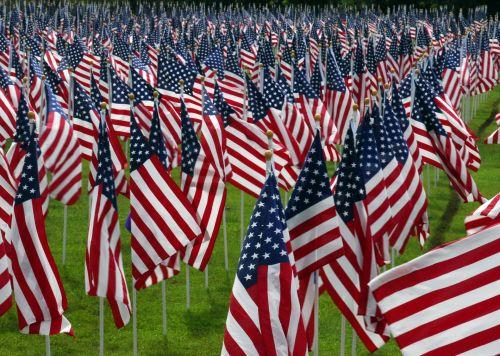 amerikiečių & nbsp, vėliavos, kapinės, kapai, veteranai, viešasis & nbsp, domenas, tapetai, fonas, atminimas, kapinės, kareiviai, Prisiminti, auka, kariuomenė, patriotinis, simbolis, raudona, balta, mėlynas, žvaigždės & nbsp, juostelės, kritęs, masė, usa, amerikietiškos vėliavos