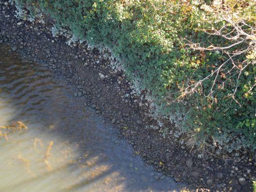 kranto linija, upė, akmenys, vanduo, Amerikos upė, folsom 245