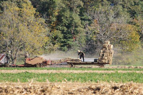 amish,pennsylvania,ūkis,kaimas,apskritis,lancaster,arklys,kraštovaizdis,laukas,gyvūnas,Žemdirbystė,senamadiškas,vintage,medžiai,vežimas