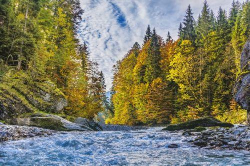 ammer alpine autumn
