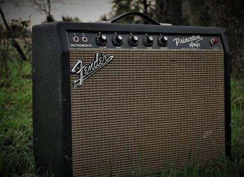 amp  fender  concert