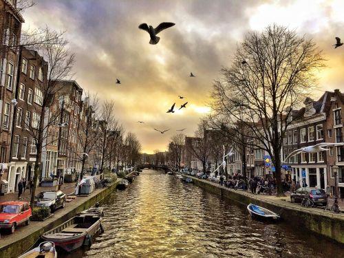 amsterdam city tour