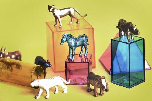 amusement  animals  background