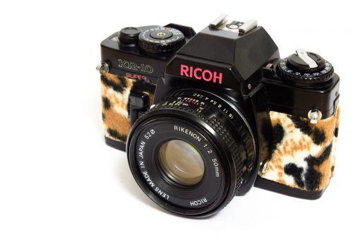 analog camera leopard