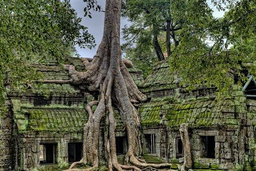ancient  angkor  angkor wat temples