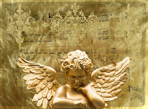 angel wing angel face