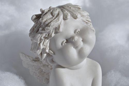 angel wing white