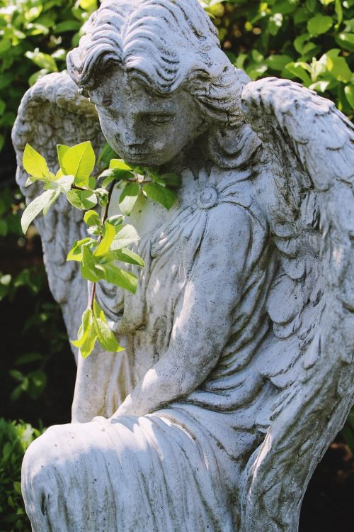angel,statue,nature,cemetery,grave,mourning,death,tombstone,peaceful,funeral,last calm,plant,branch,resting place,rest,memorial,transience,tomb,rock carving,symbol,holy,sculpture,die,consolation,stone figure,pray,memory,farewell,faith,hope,spiritual,wing,guardian angel,figure,peace,deco,angel figure,symbolic,love,prayer,harmony,spirituality,religion,silent,stone,infinity,close,old,woman