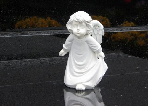 angel angel face angel wings