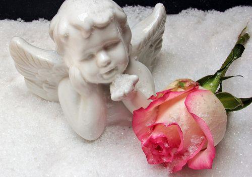angel angel figure rose