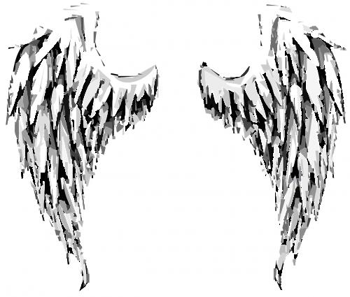 angel wings angel wings