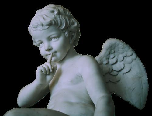 angel wing little angel