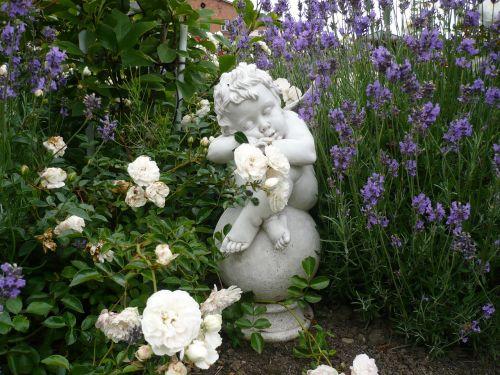 angel garden flowers