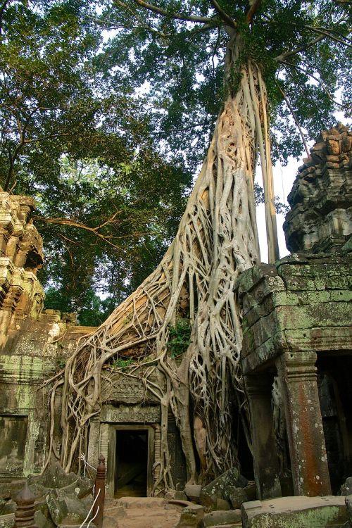 angkor thom cambodia ruin