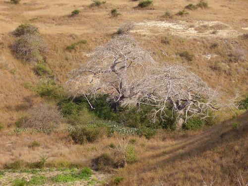 angola luanda landscape