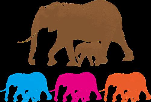animal ai illustrator