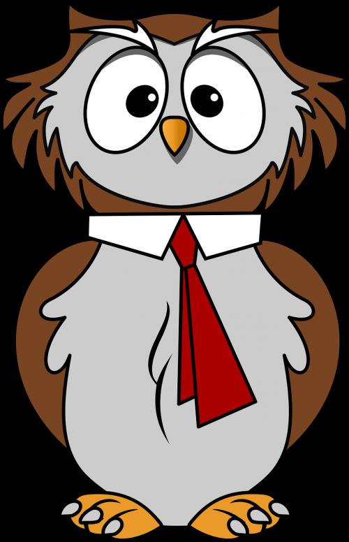 animal bird cartoon