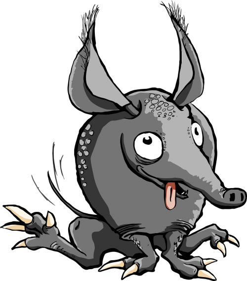 animal armadillo armored