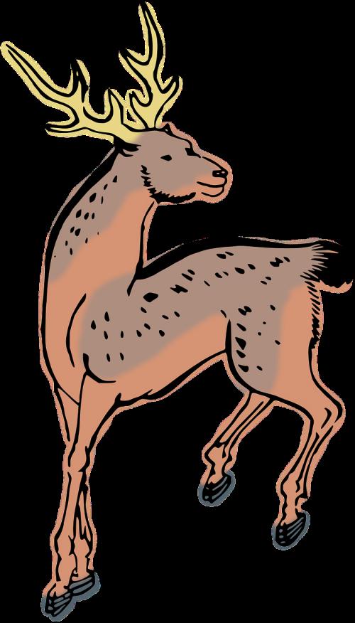 animal deer woodcut