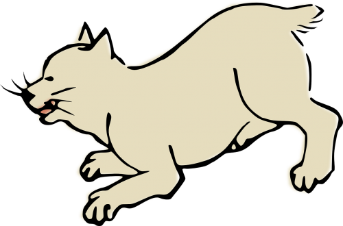 animal cat woodcut