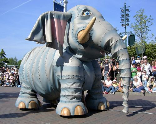 animal elephant trunk