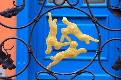 animal hare hare window