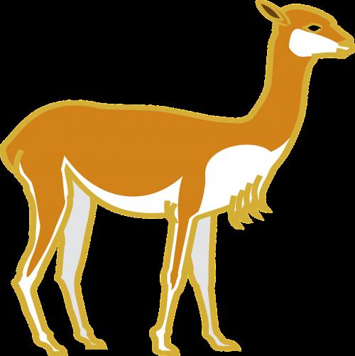 animal deer hart