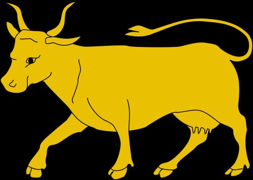 animal bull cattle