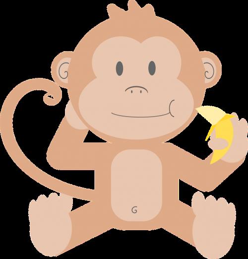 animal cartoon monkey
