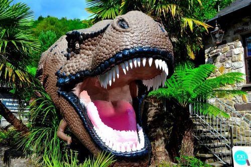 animal dinosaur reptile