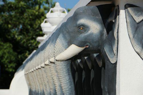 animal elephant pagoda