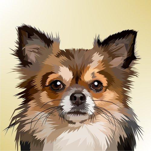 animal  decoration  dog