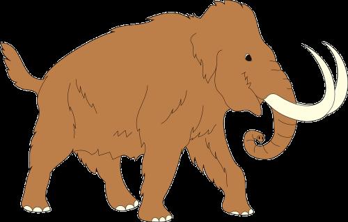 animal ancient mammoth