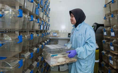 animal containment facility biotechnology research institute universiti malaysia sabah